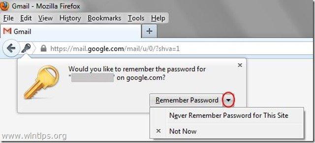 firefox-remember-password-window
