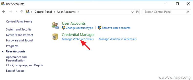 Internet Explorer view password