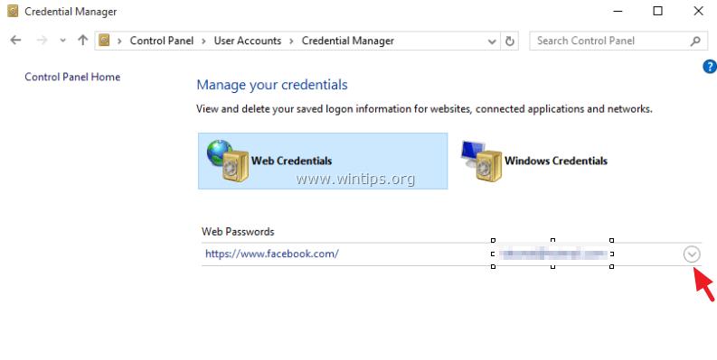 Internet Explorer show password