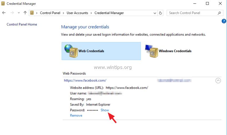 Microsoft Edge Show Saved Password