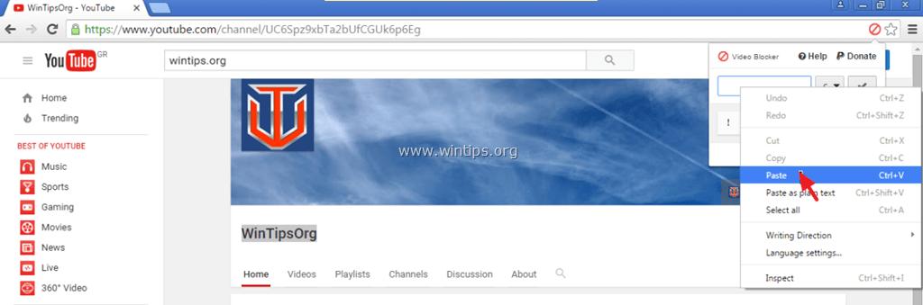 block youtube video