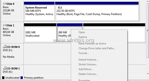 Cannot Delete EFI Partition - Delete Option is Grayed Out