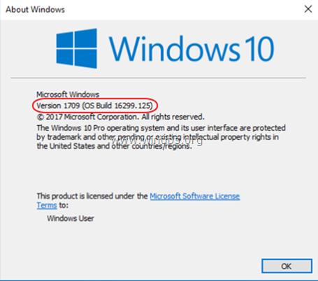 view windows 10 version build