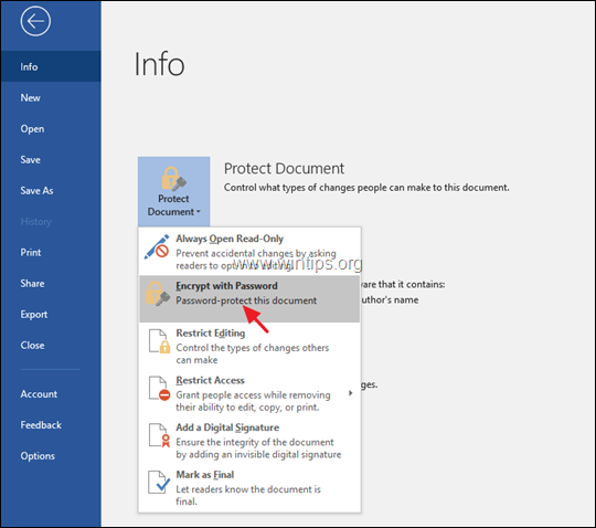 How to Password Protect Office Documents (Word, Excel, PowerPoint)
