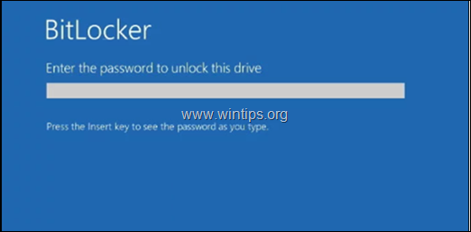FIX: Dell Laptop Needs the Bitlocker Recovery key