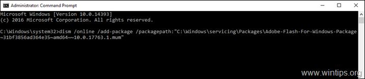 Install Adobe Flash Player on Server 2019
