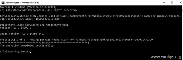 Install Adobe Flash Player on Server 2016