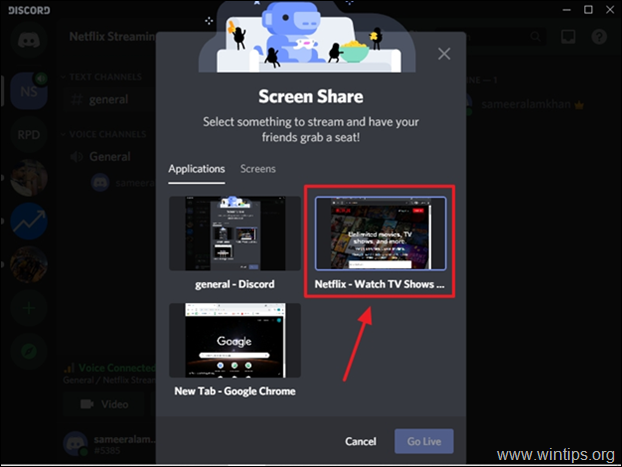 stream netflix video on discord